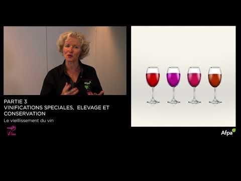 UA3 -Vidéo 11 - Le viellissement du vin