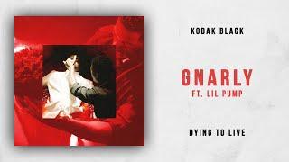 Kodak Black – Gnarly feat. Lil Pump