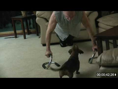 80 Year Old Marine does 500 pushups in 30 minutes