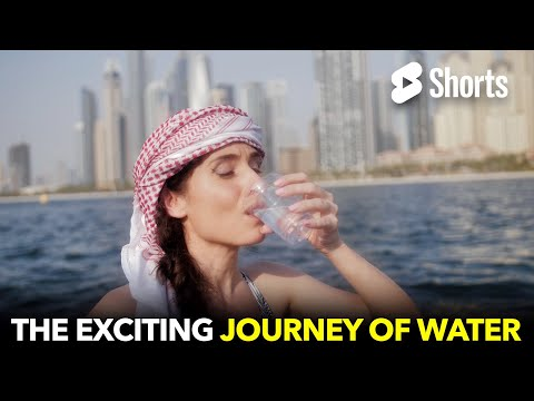 The Exciting Journey of Water