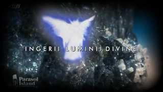 Ingerii Luminii Divine