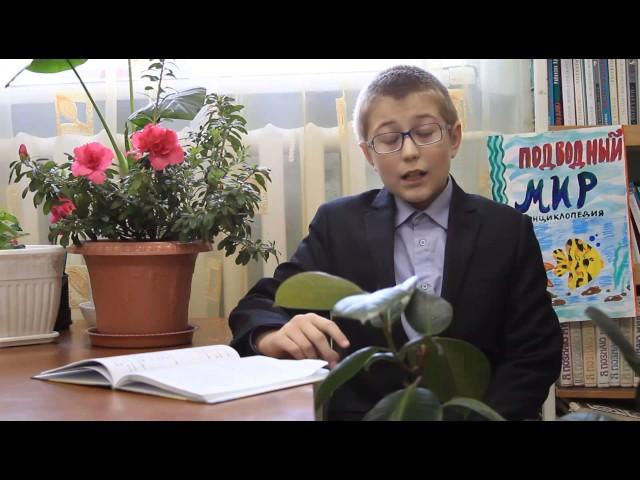 Изображение предпросмотра прочтения – ВасилийКузьмин читает произведение «Свинья под дубом» И.А.Крылова