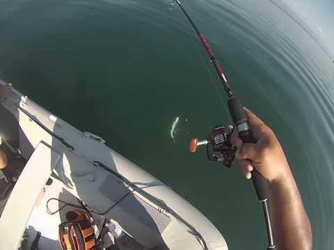 La pêche dans golfe corinthien