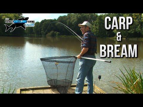 Bream and Carp Fishing Tips | TAFishing