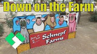SCHNEPF FARMS FUN! (10.17.14 - Day 931)
