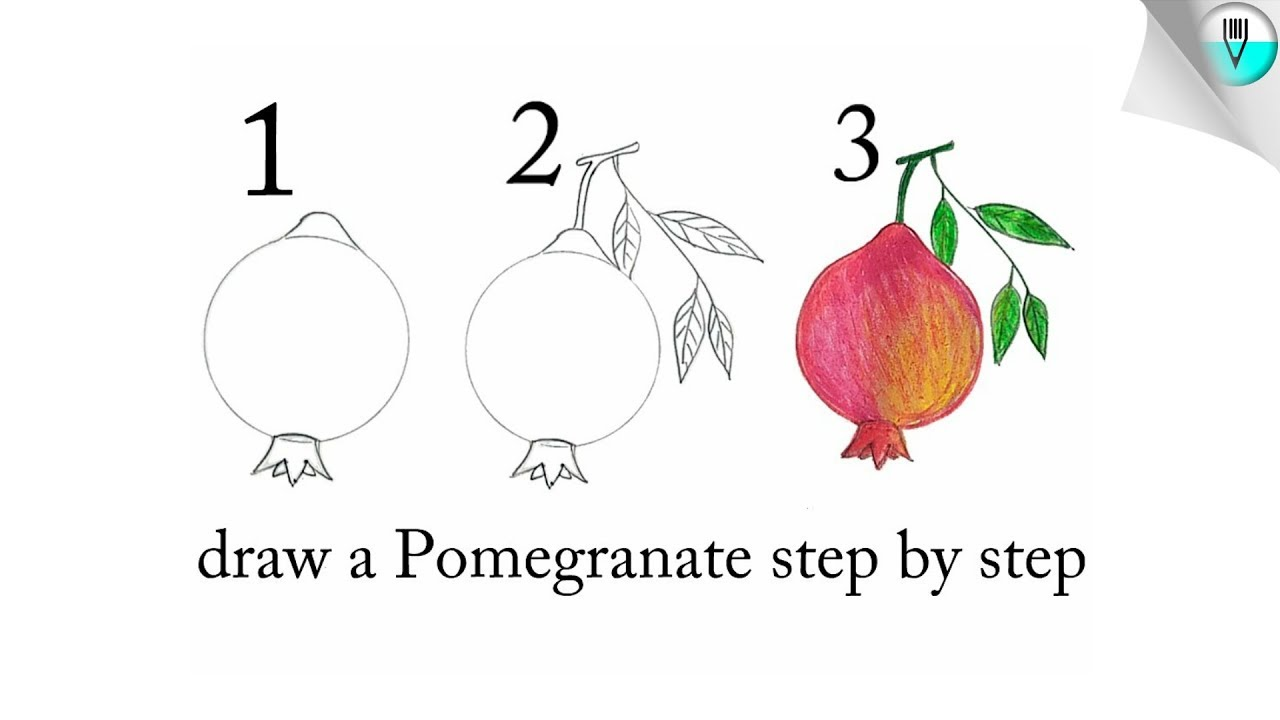 Drawing Easy Step By Step Pomegranate