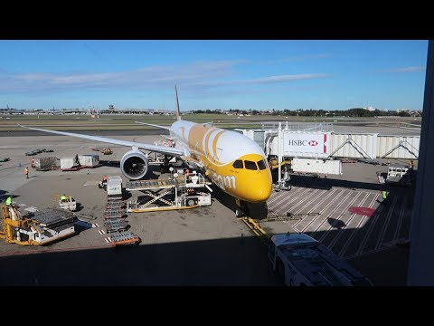 FlyScoot (ECONOMY) | Boeing 787 | Sydney – Singapore | FLIGHT REPORT #1