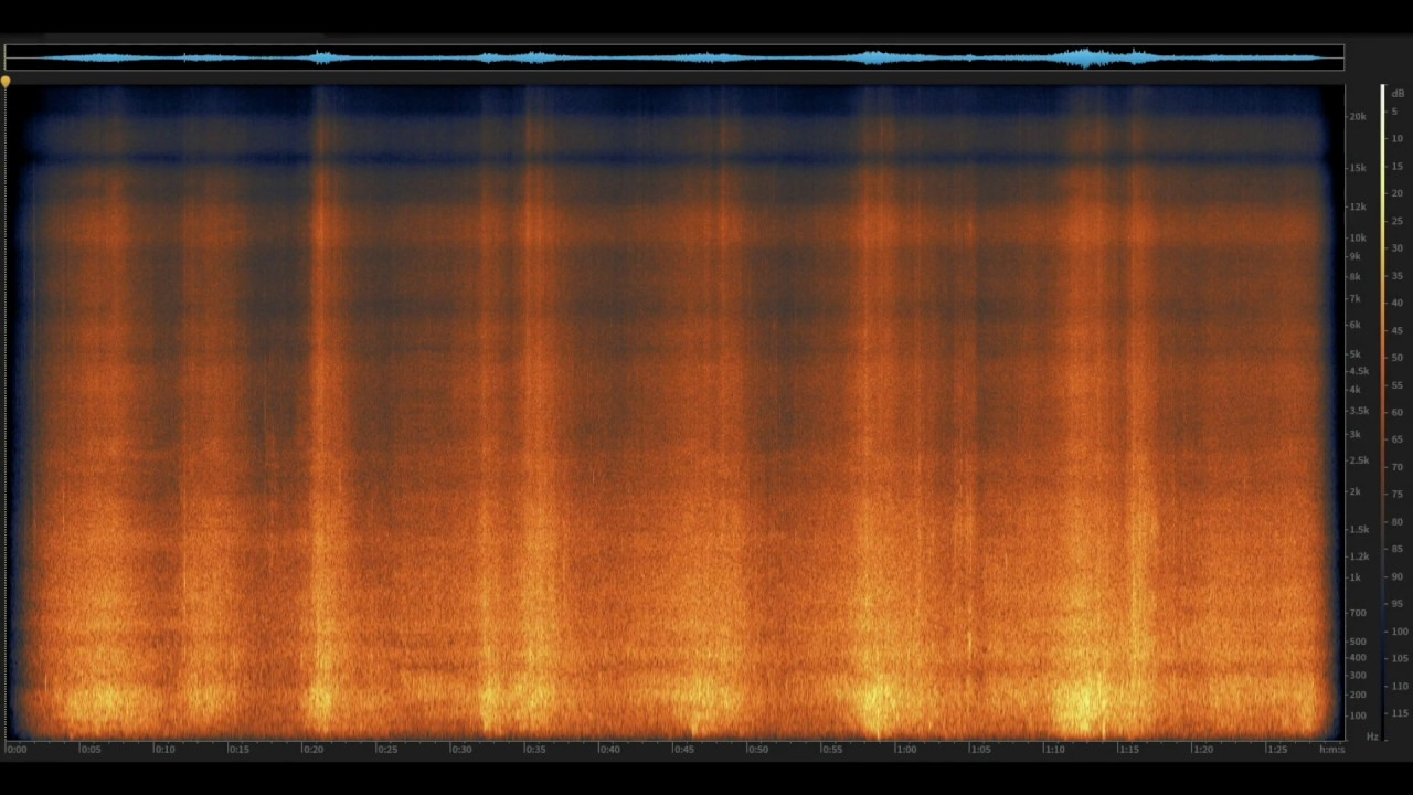Pacific Tide Pool: Big Sur, California | Spectrogram Follow