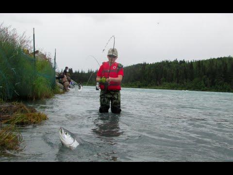 Kid catching his limit of sockeye salmon fishing the kenai for Kenai river fish counts
