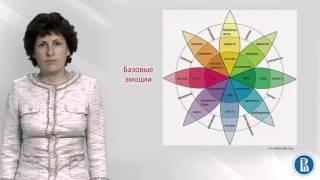 Социальная психология. Лекция 6.1. Определение и виды эмоций
