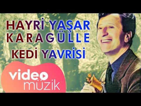 Hayri Yaşar Karagülle - Kedi Yavrisi