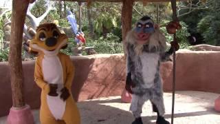 Rhythm of the Jungle at Disneyland Paris
