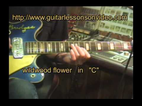 LEARNING WILDWOOD FLOWER