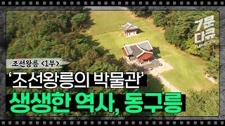 조선왕릉 1부, 용의 눈물, 동구릉