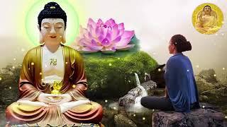 ❤Đêm Khó Ngủ Nghe Lời Phật Dạy ❤Tâm An Thanh Tịnh Hết Bệnh Ngủ Ngon❤