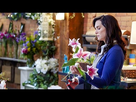 Download Flower Shop Mystery: Snipped in the Bud starring Brooke Shields - Hallmark Movies & Mysteries