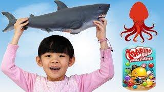 Bé Giải Cứu Đại Dương Cùng Với Bánh Cá Marine Boy ❤ AnAn ToysReview TV ❤