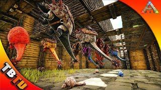 BEST ARK DINO GESTATION BREEDING PEN! FULLY MUTATED DOEDICURUS! Ark  Survival Evolved