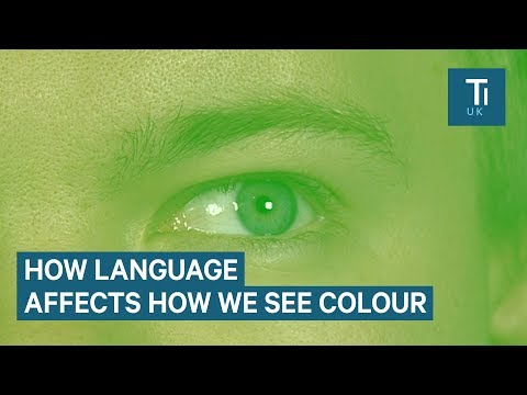 How language changes the way we see colour