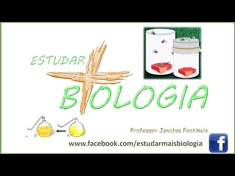 Origem da Vida: Biogênese, Abiogênese, Redi, Needham, Spallanzani e Pasteur. Prof. Jonatas Fontinele