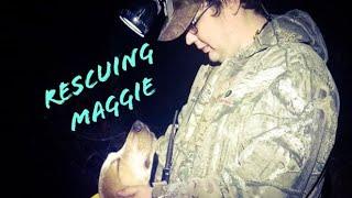 Nite Life Family member Austins lost dog Maggie