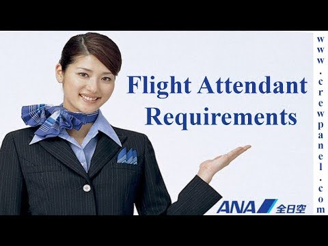 Flight Attendant Job Requirements ANA All Nippon Airways is the largest airline in Japan