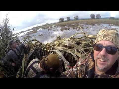 Duck Hunting, Sauvie Island, Oregon November, 2018