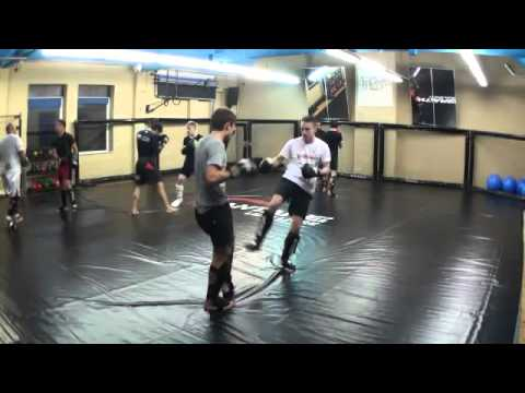 Standup Sparring