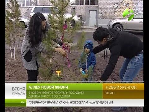 В Новом Уренгое родители посадили деревья в честь своих детей