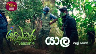 Sobadhara - Sri Lanka Wildlife Documentary | 2020-05-29 | Yala (යාල) Thumbnail
