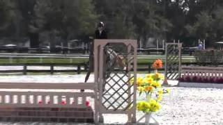 Video of Real Fancy ridden by Cathy Inch from ShowNet!