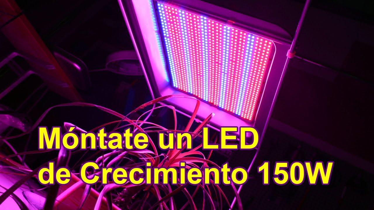 Como montar un led de cultivo de 150w por menos de 99 - Kit cultivo interior led ...