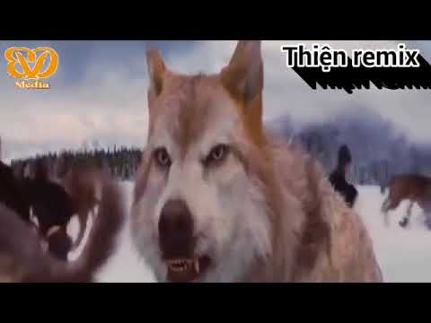 Nhạc Phim Remix| Trận chiến người sói VS Ma cà rồng- Phù thủy tối thượng