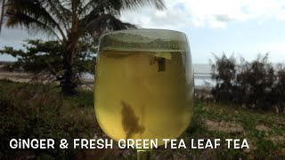 Fresh Green Tea Leaf Tea and Ginger cheekyricho tutorial