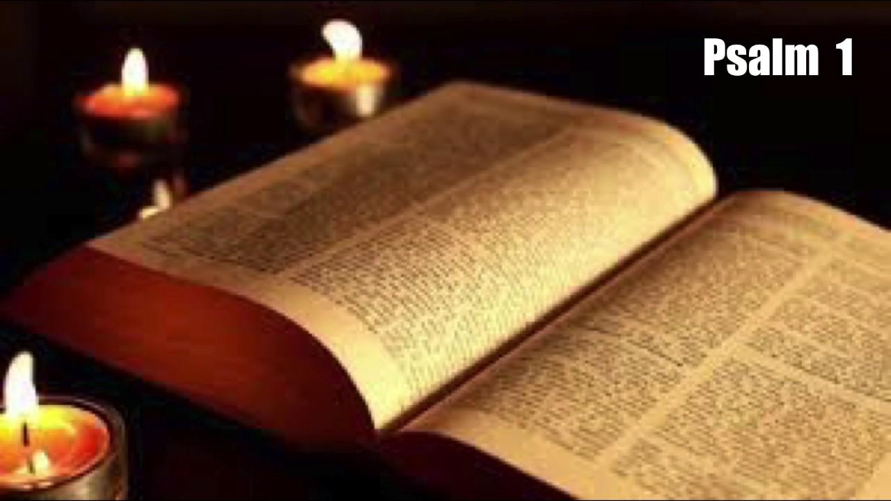 Holy Book Bible In Hindi