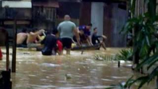 kg inanam laut banjir....