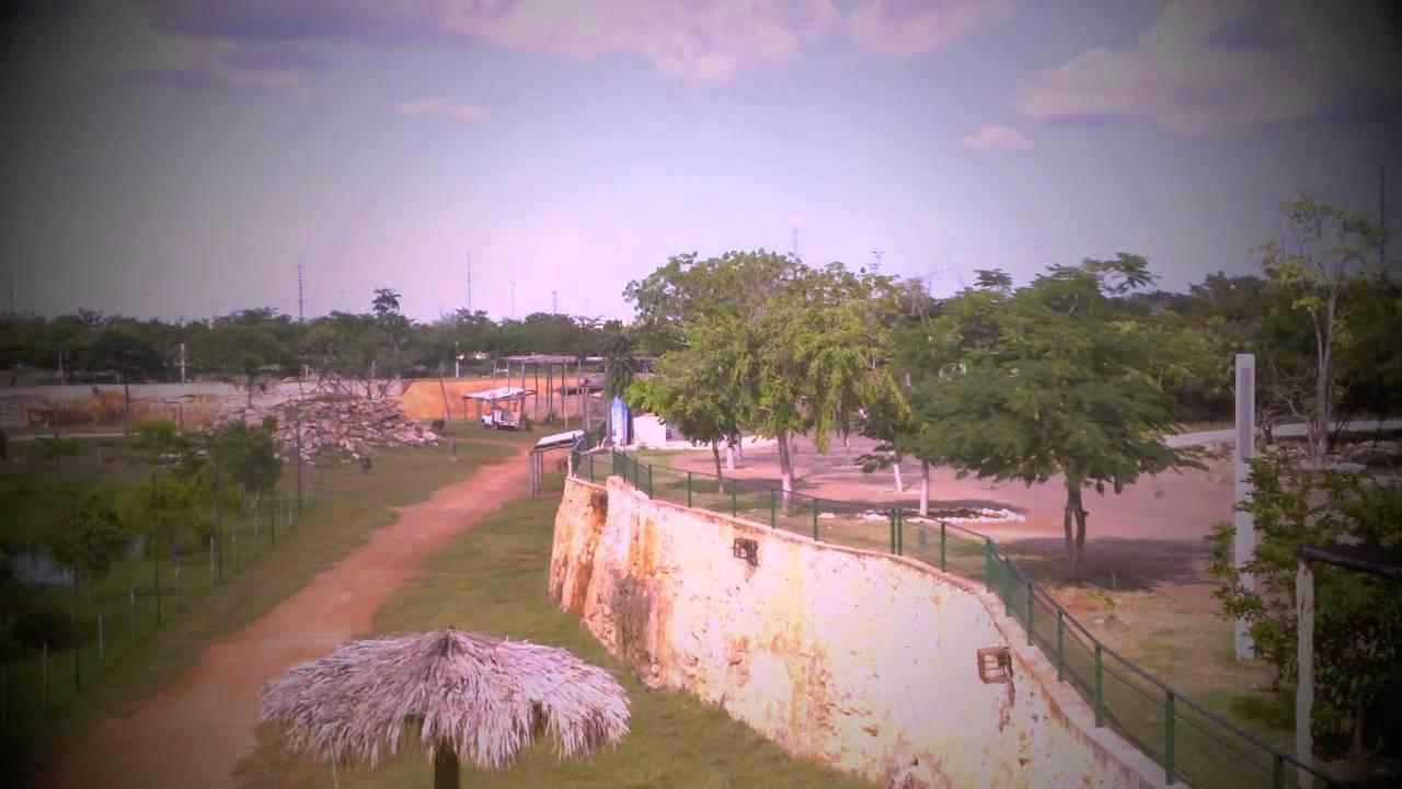 Yucatan Film
