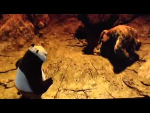 Download Kung Fu Panda Secrets of The Furious Five DVD Menu Walkthrough