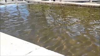 Днепродзержинск.Включили фонтан в центре города. 08.05.2014.