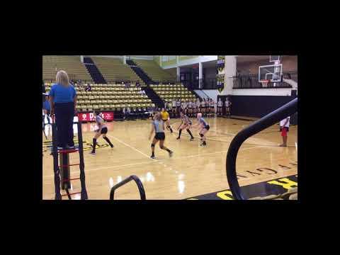 Peyton Little, Tyler Junior College Volleyball