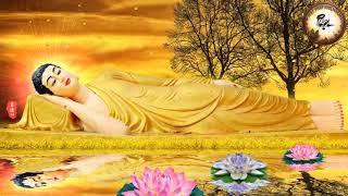 Người có Duyên Với Phật  nghe qua Câu Chuyện Này Cuộc Đời sẽ được An Lạc Hưởng Phúc 3 Đời