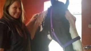 vuclip My horse khai xxx