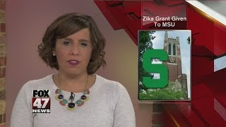 MSU lands $1 million USAID grant to fight Zika