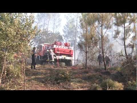Embaucher des sapeurs-pompiers volontaires, un plus pour les collectivités et les entreprises
