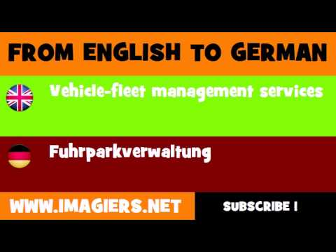 FROM ENGLISH TO GERMAN = Vehicle fleet management services