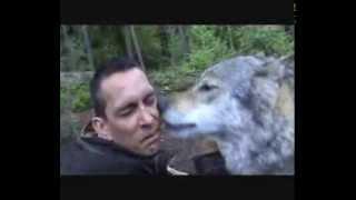 Волчий поцелуй