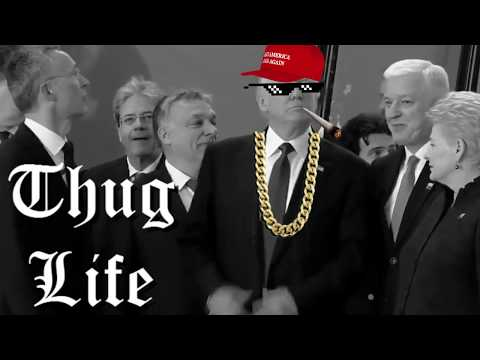 THUG LIFE - President Trump Pushes Prime Minister Montenegro