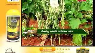 annadata video clip News18 Karnataka