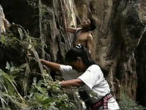Trailer do filme Glass Ceiling