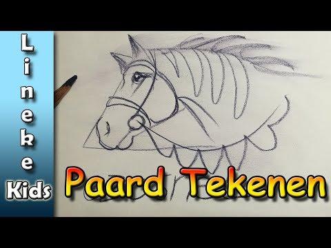 3d Tekening Gat In Papier Tekenen In Stappen Voor Beginners